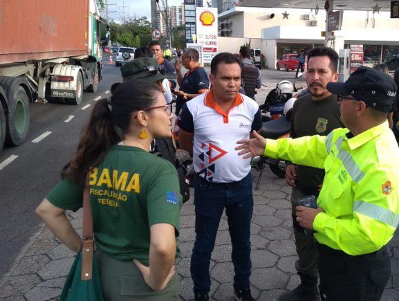 Ibama, Detran e Manaustrans realizam ação na Avenida Ephigênio Sales para prevenir a colisão de veículos com periquitos de asa branca.